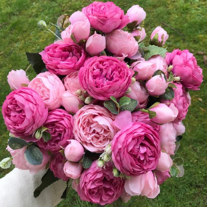 Цветы красивые фото пионы 026