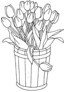 Цветы не раскрашенные картинки   подборка001