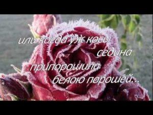 Цветы прекрасной женщине картинки025