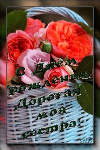 Цветы фото для сестры   красивые029