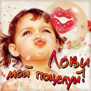 Целую я тебя фото и открытки018