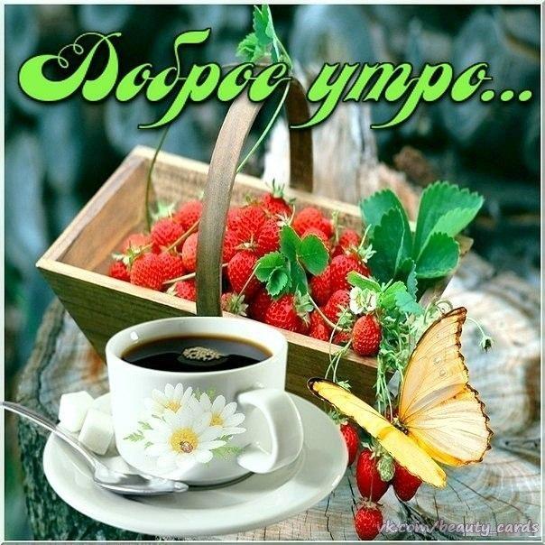 Чашка чая с добрым утром   картинки 026