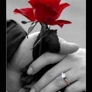 Черно белые фото с красными элементами   картинки 018