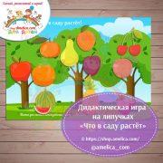 Что растет в саду картинки для детей019