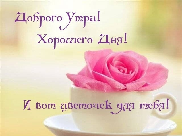 Чудесного доброго утра картинки и открытки002