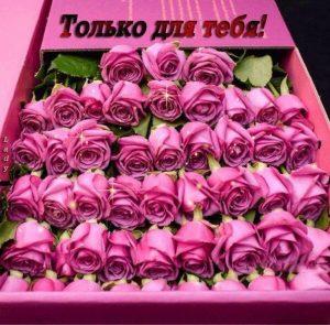 Эти цветы тебе картинки и открытки милые 013
