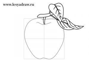 Яблоко картинки для срисовки для детей 016