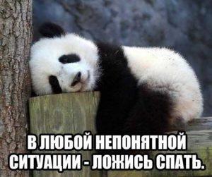 фото и картинки ложись спать приколы022