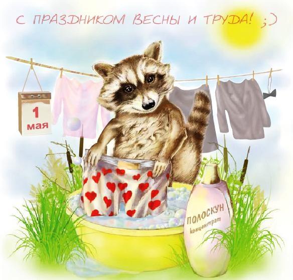 Поздравление днем, день весны и труда картинки прикольные
