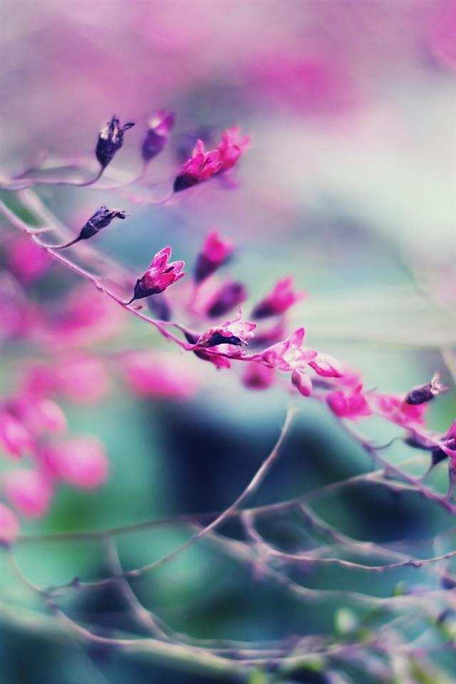 Purple aesthetic   красивые картинки012