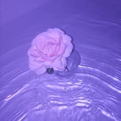Purple aesthetic   красивые картинки020