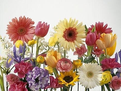 Букеты из садовых цветов фото   красивые009