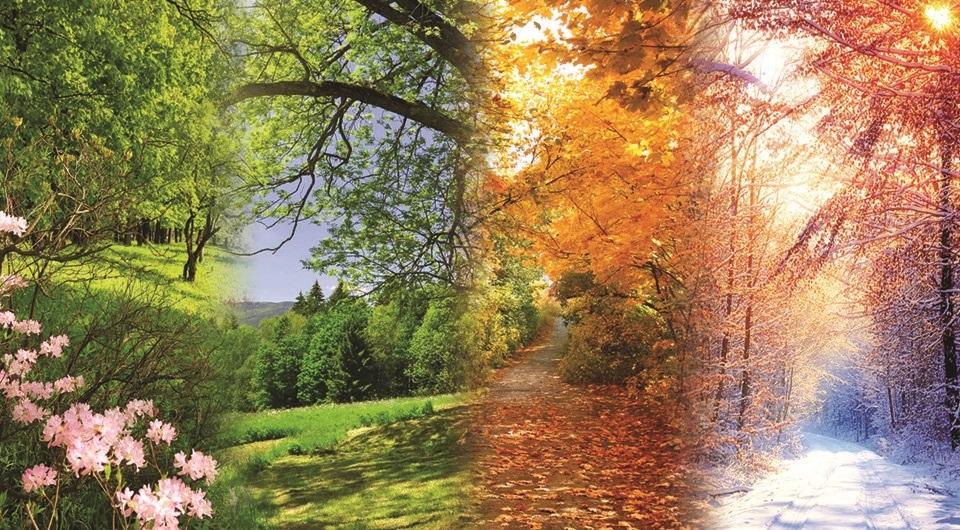 Времена года картинки осень   красивая подборка002