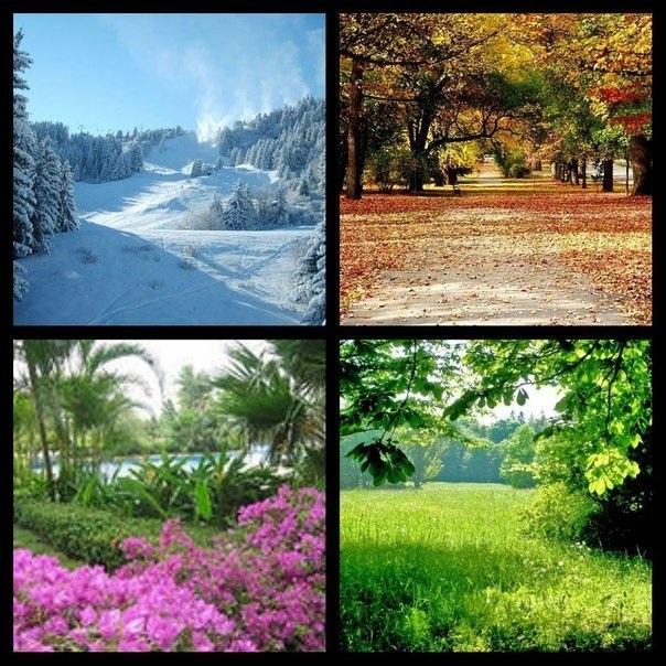 Времена года картинки осень   красивая подборка008