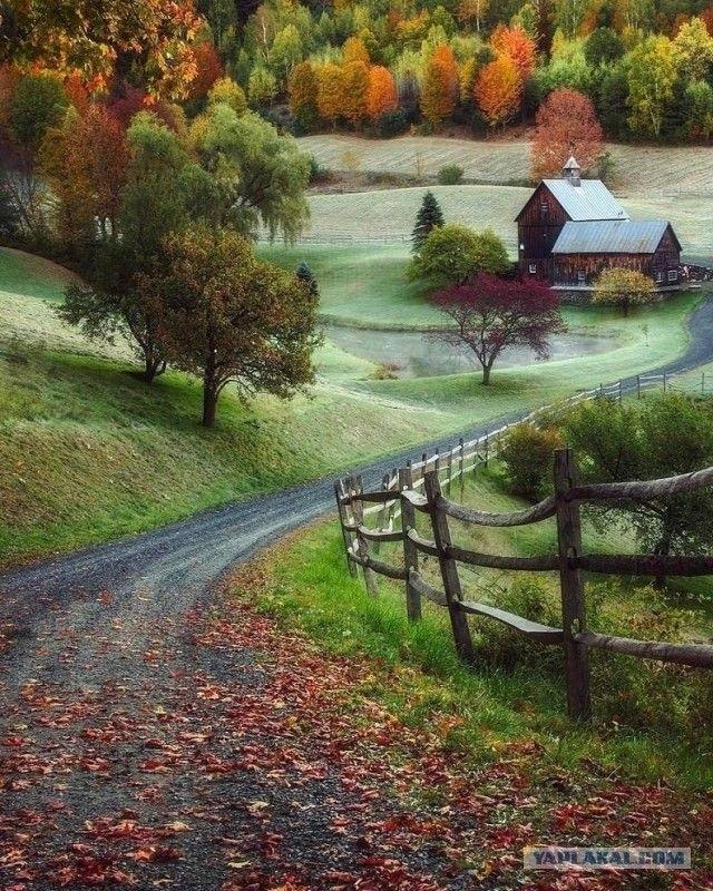 Времена года картинки осень   красивая подборка009