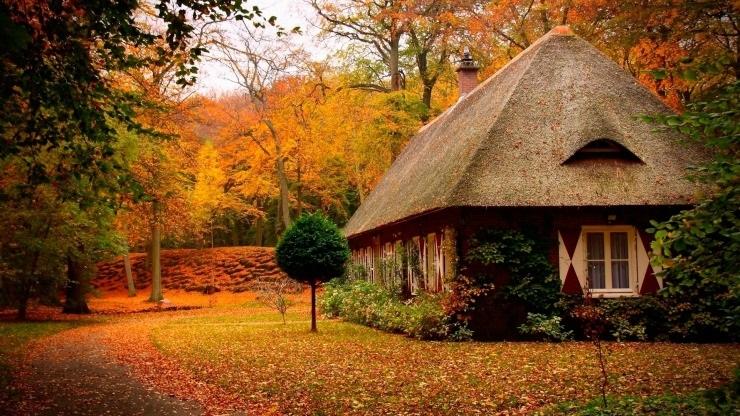 Времена года картинки осень   красивая подборка016