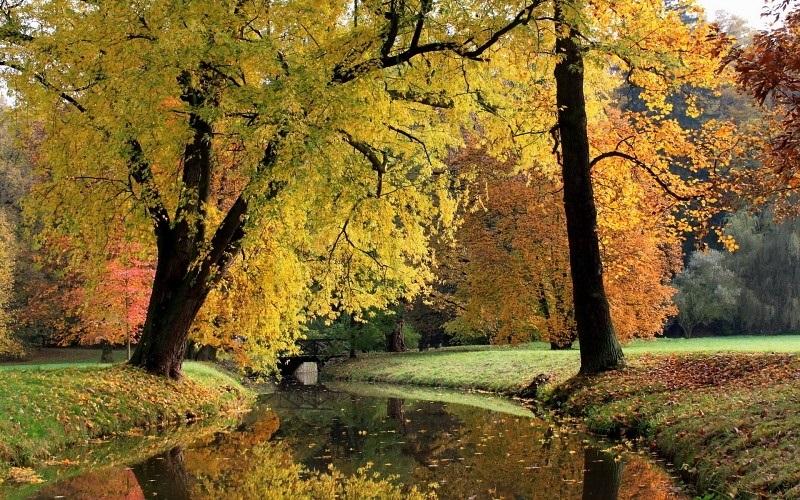 Времена года картинки осень   красивая подборка021