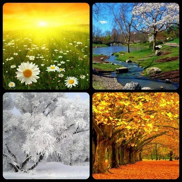 Времена года картинки осень   красивая подборка022