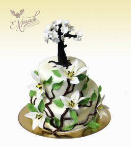 Дерево торт фото   картинки019