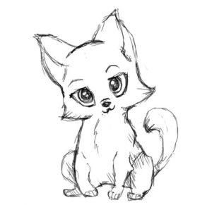 Картинки нарисованных карандашом кошек   красивая подборка009