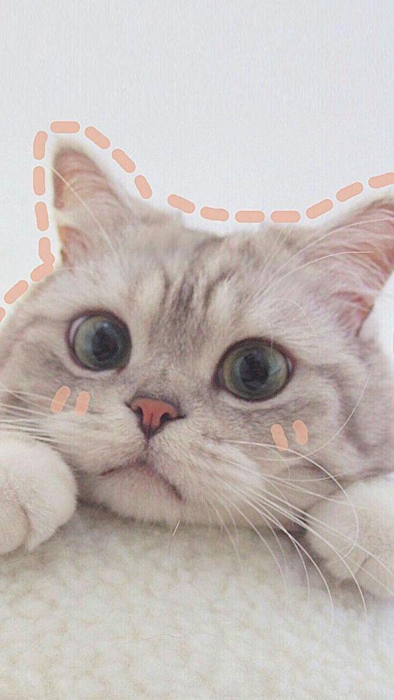Картинки на аватарку   подборка015
