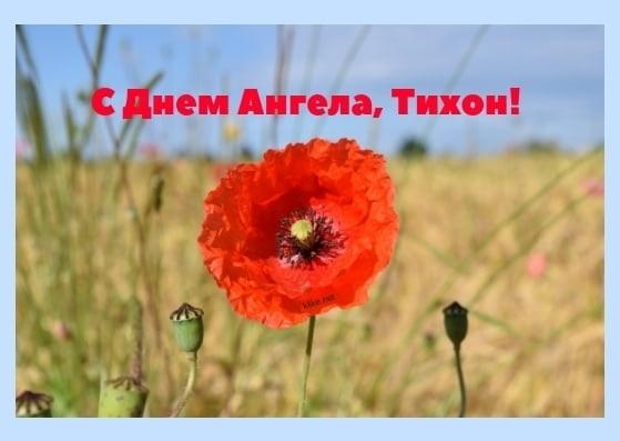 Картинки на именины Тихона с днём ангела   открытки011