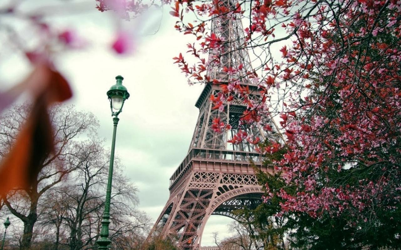 Картинки на рабочий стол осень в Париже004