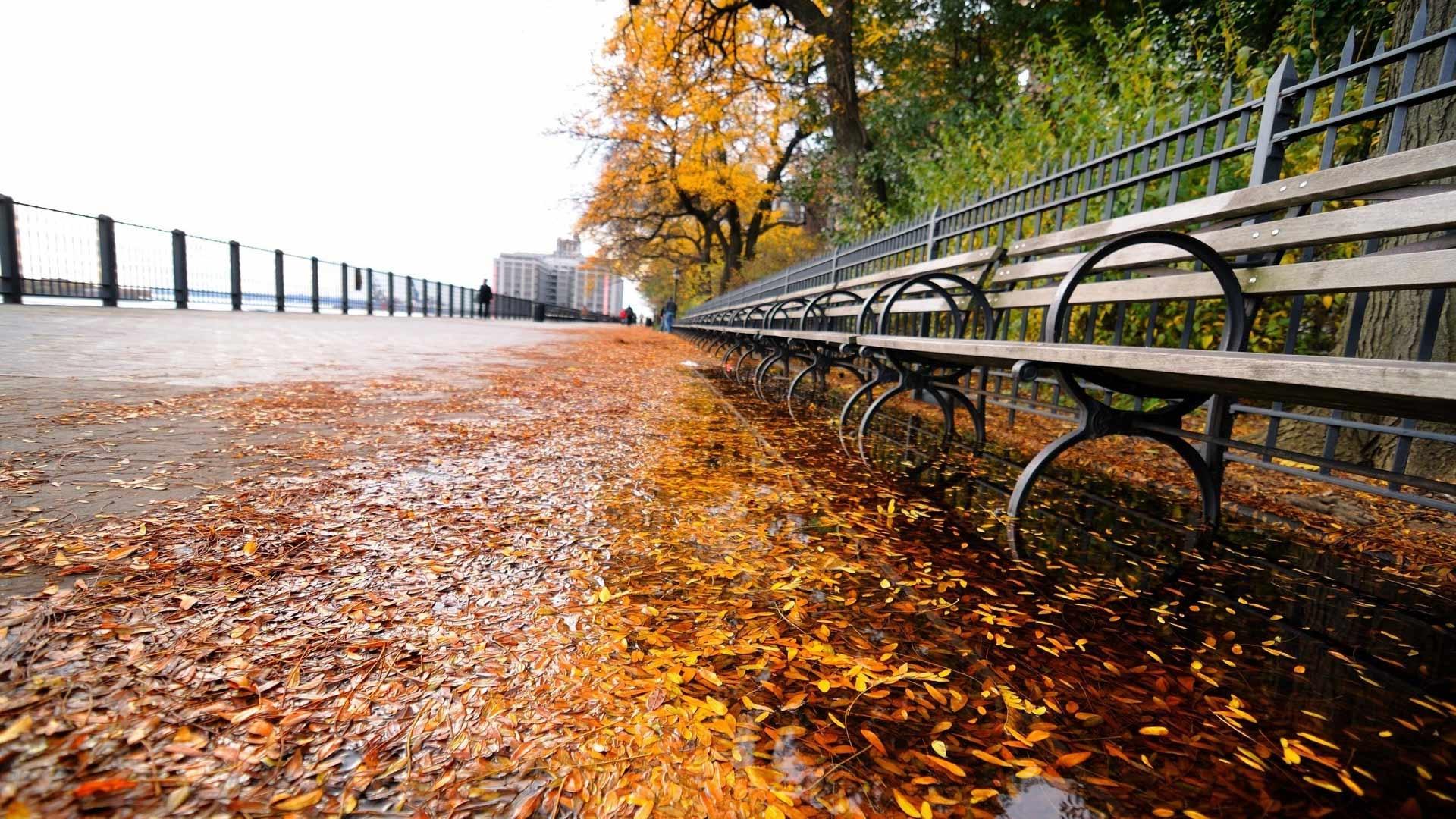 Картинки осень в Париже на рабочий стол015