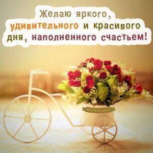 Картинки позитивного дня настроения   красивая подборка021