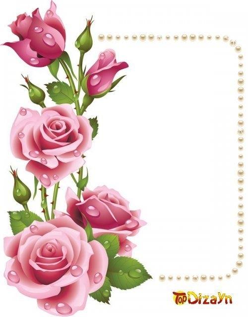 Картинки розы в сердце   подборка019