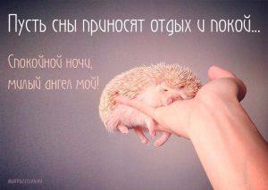 Картинки сладких снов мамочка   красивая подборка017
