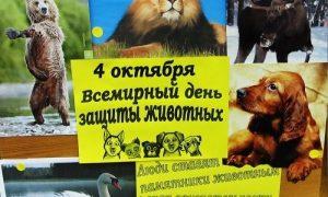 Картинки с всемирным днем защити животных   подборка022