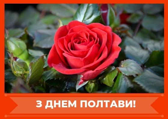 Картинки с днем города Полтава   подборка025