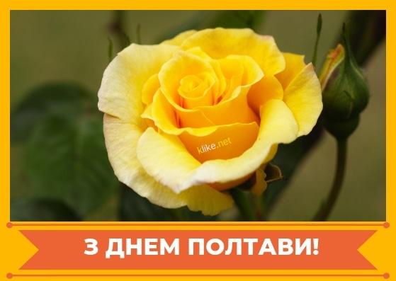 Картинки с днем города Полтава   подборка026