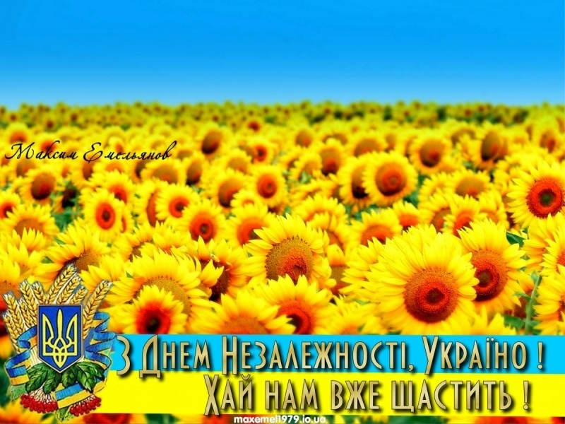 мерцающие картинки день независимости украины голландские матросы