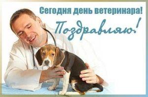 Картинки с днём ветеринара   подборка027