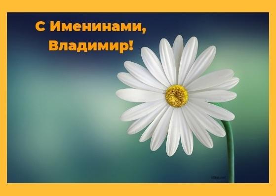 Картинки с именинами владимир   красивая подборка009