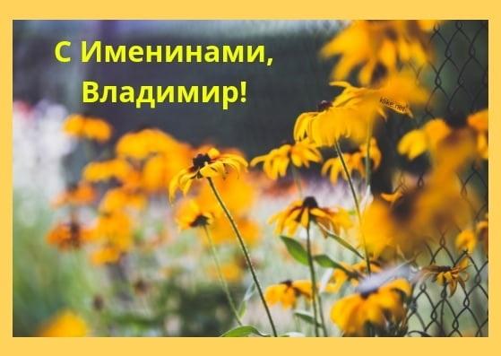 Картинки с именинами владимир   красивая подборка011