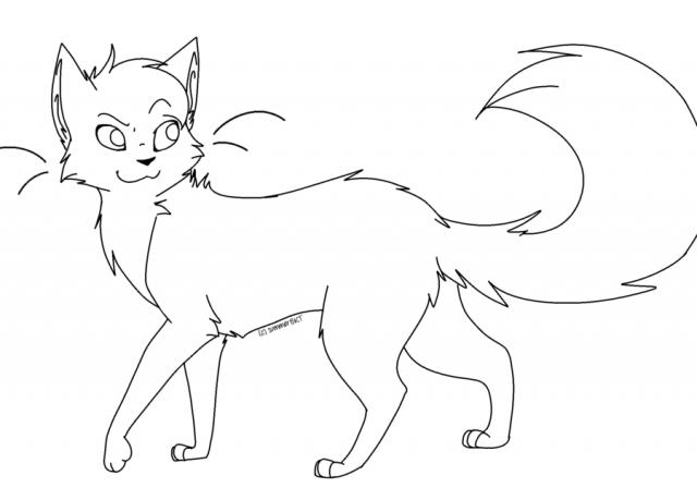 Картинки с кошками для срисовки   арты017