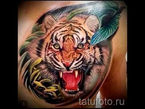 Картинки тигра оскал   красивая подборка002
