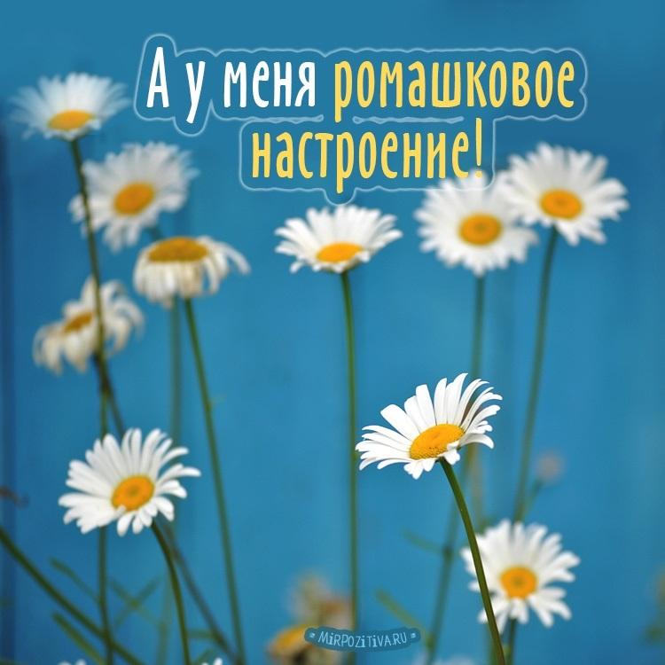 Красивые картинки для детей хорошего качества   красивая подборка016