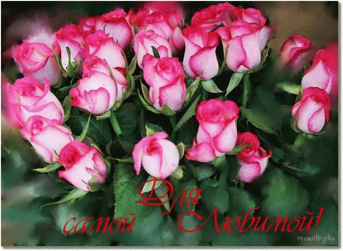 Красивые картинки для любимой014