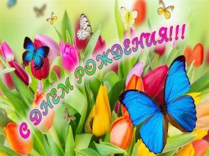 Красивые картинки с днем рождения София   открытки027