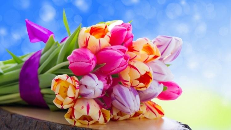 Красивые цветы на картинках   красивая подборка001