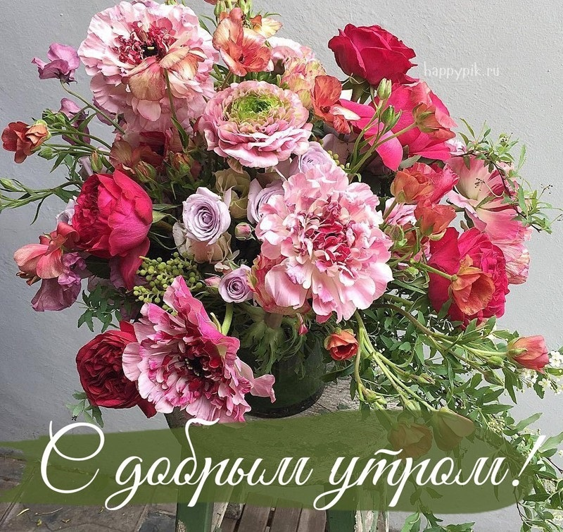 Красивые цветы на картинках   красивая подборка002