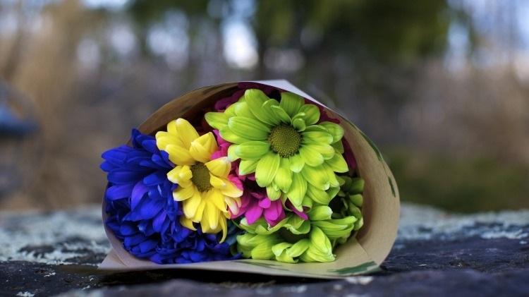 Красивые цветы на картинках   красивая подборка004