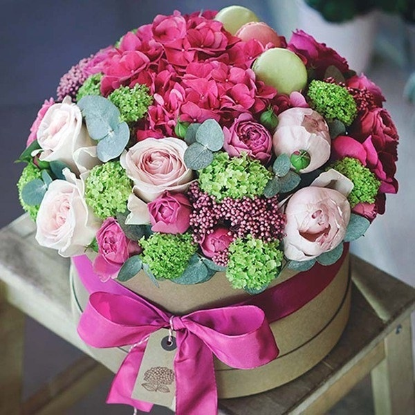 Красивые цветы на картинках   красивая подборка009