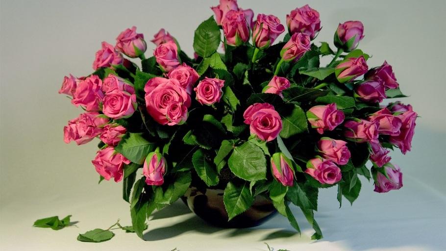 Красивые цветы на картинках   красивая подборка013