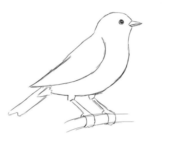 Легкие рисунки для срисовки карандашом012