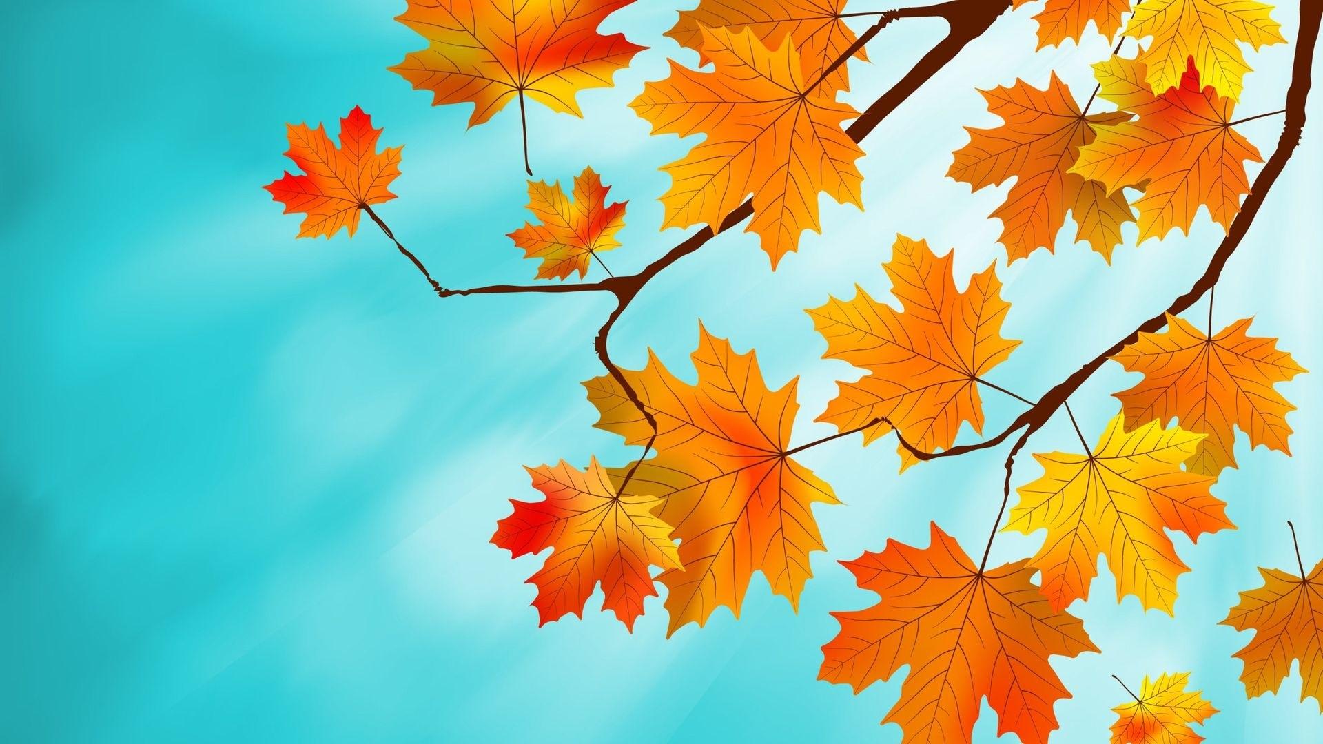 Осенние листья картинки на рабочий стол004